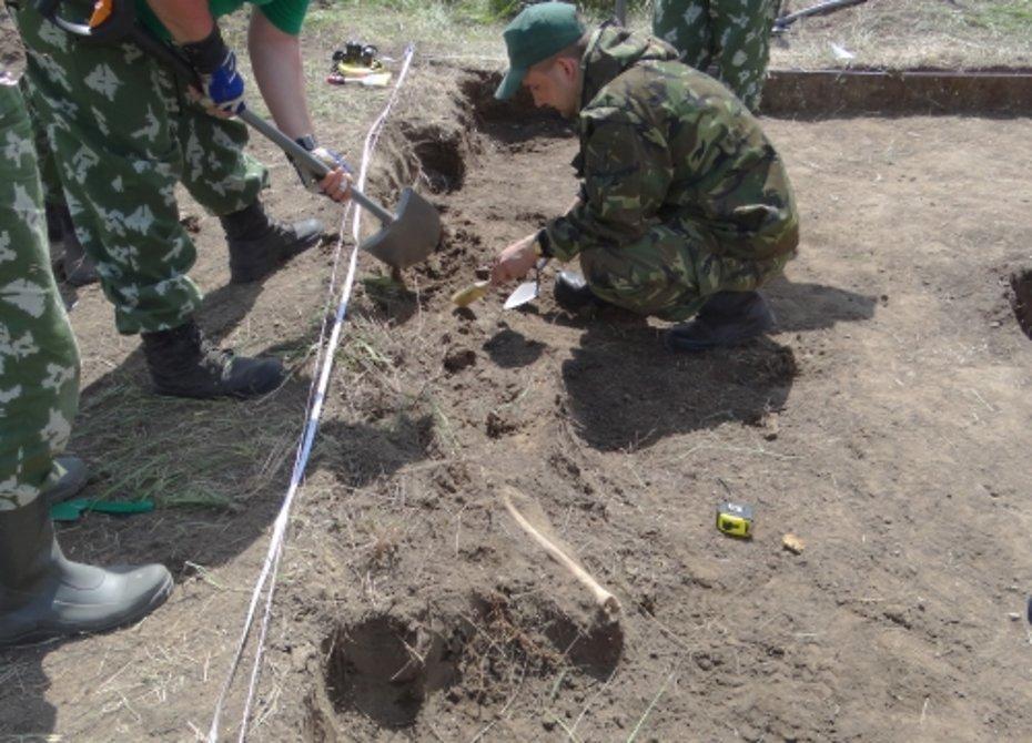 Под Новгородом нашли останки 159 советских воинов